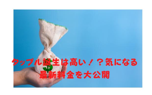 タップル最新料金を大公開